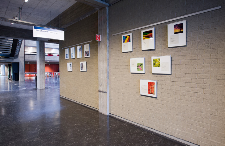 artiteq picture hook perfectly hung sydney art hanging gallery rail system.jpg
