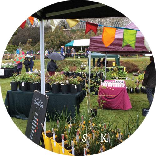 Boconnoc Garden Designer Cornwall