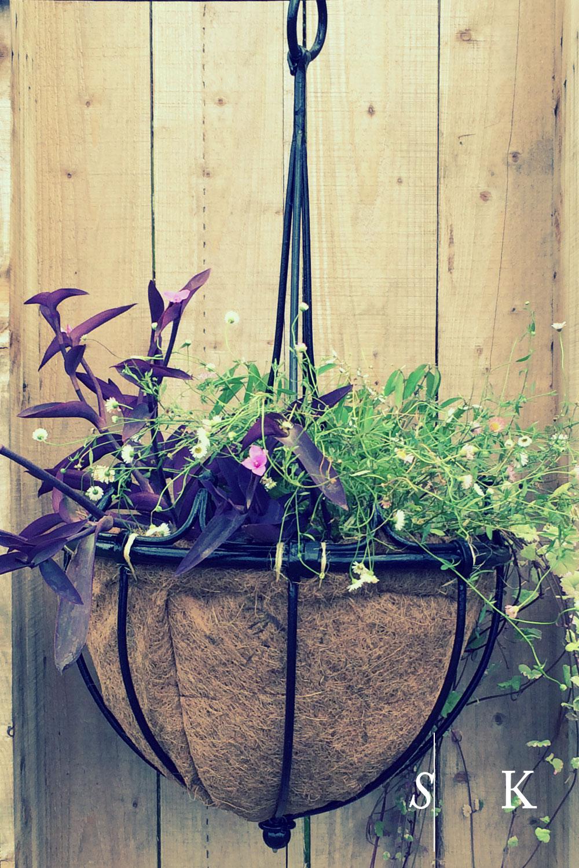 Selma-Klophaus-Garden-Design-x11bespokehangingbasket.jpg