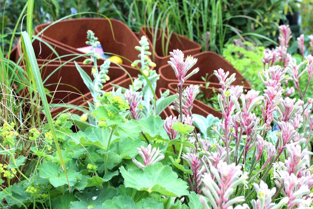Bespoke  Art in a Garden in the Cornish Sun