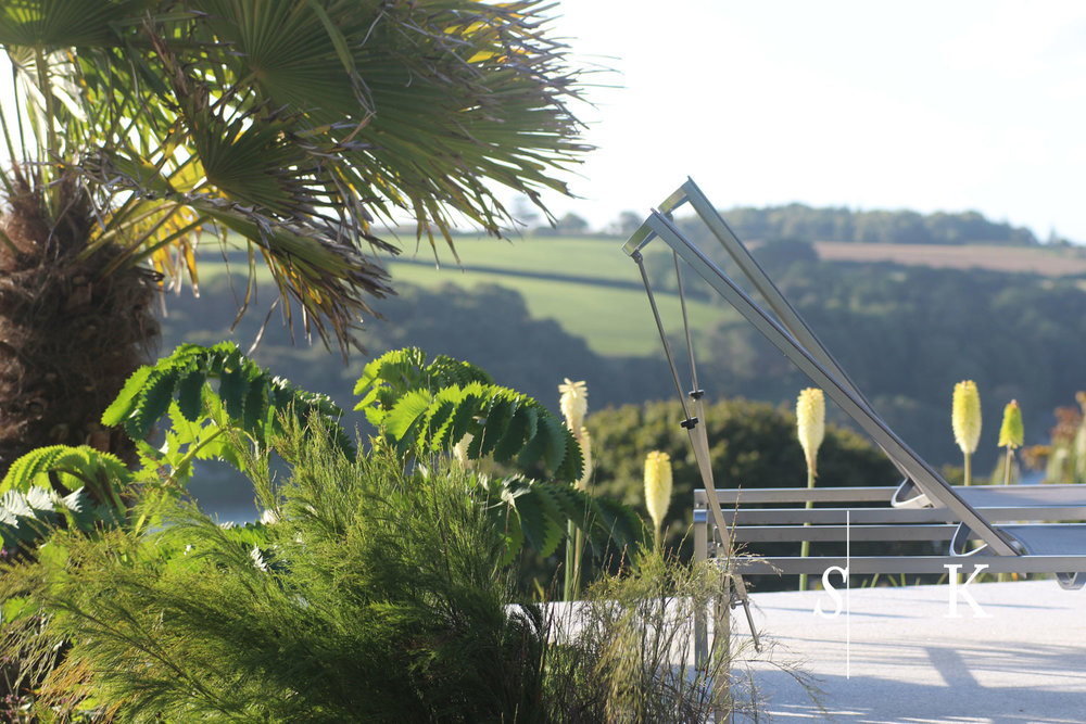 Beautiful  October sun Cornwall Garden