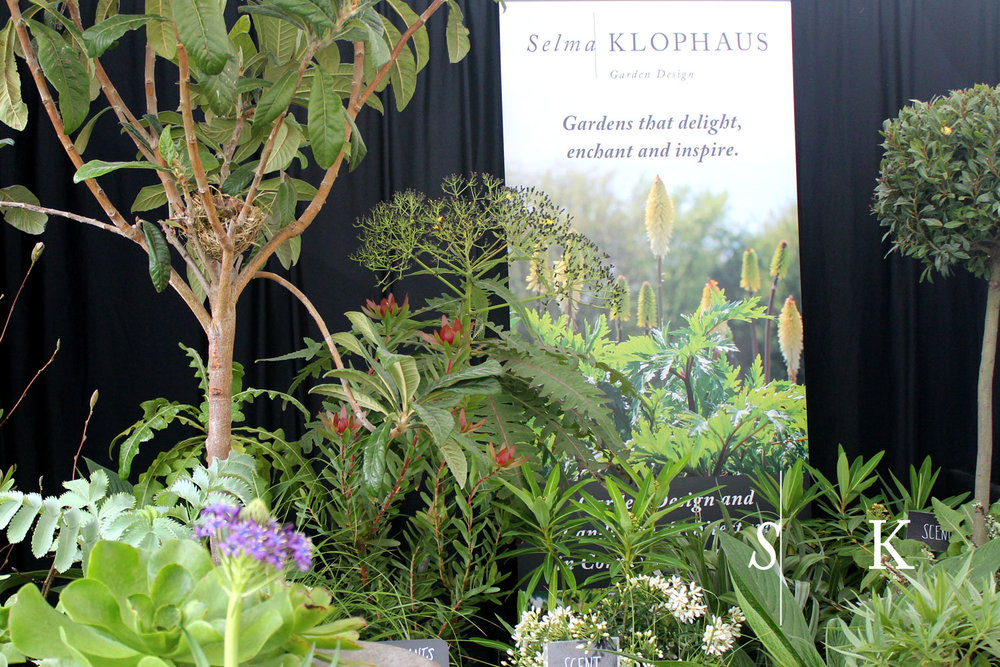 Cornwall Garden Society Spring Flower Show 2018