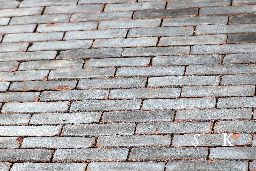 Selma-Chelsea18_05.jpg