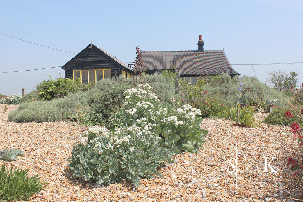 Dungeness 2018