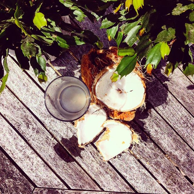We keep things natural here at Melt and Co. HQ. Straight to the source for the ultimate refreshment. #coconut #clean #hydration #natural #healthy
