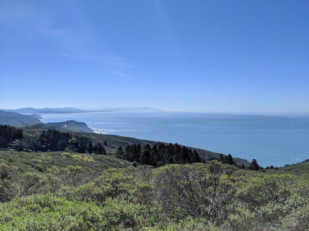 Our hike, Dipsea trail combined with Steep Ravine.