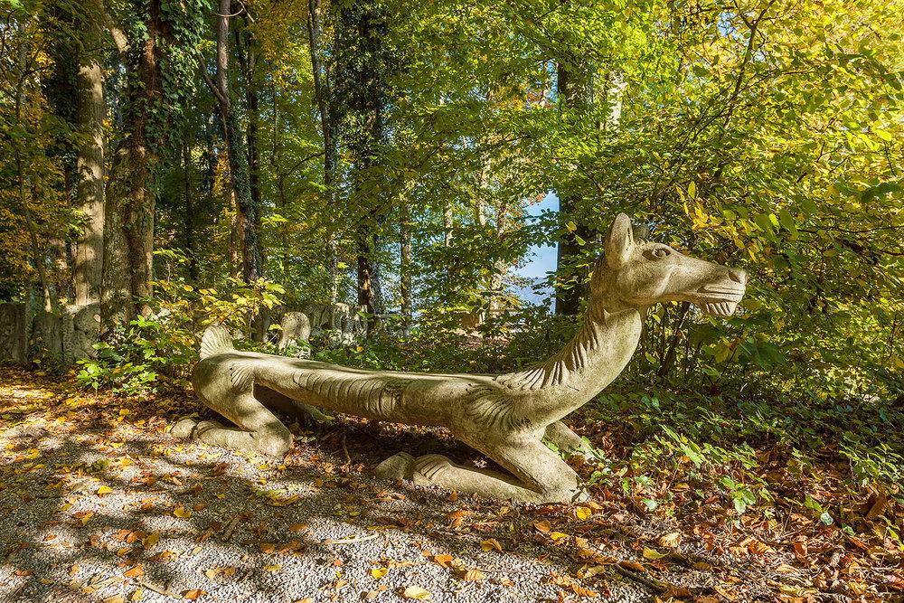 Reh im Waldgarten