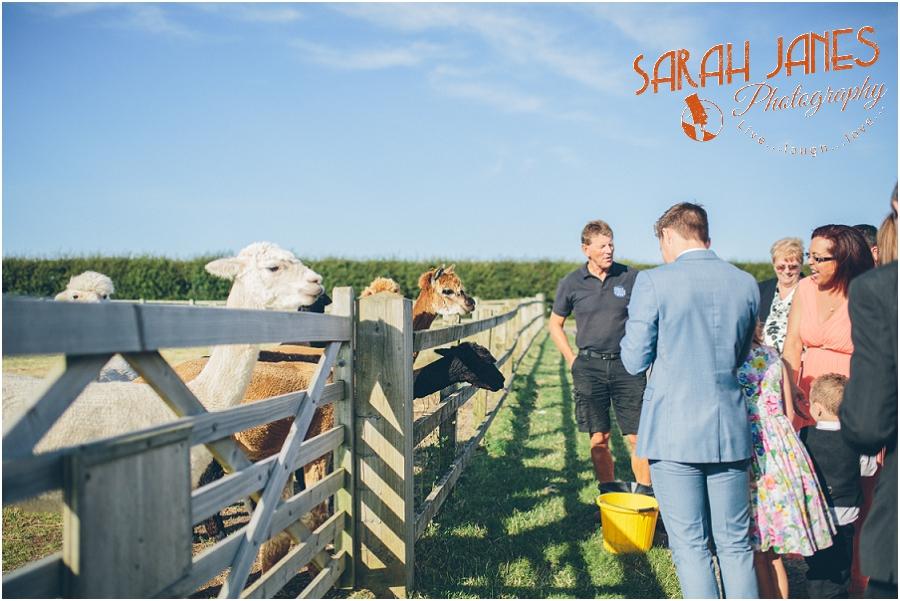 Church Farm weddings, Sarah Janes Photography, ukulele Band_0050.jpg