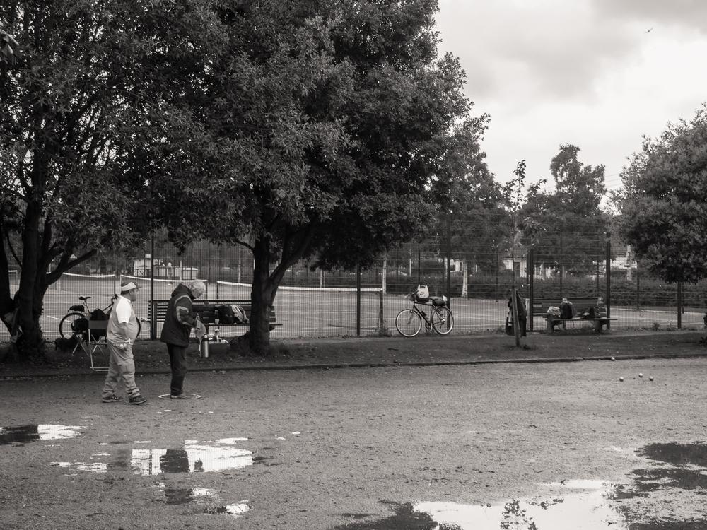 bushy-park__004.jpg