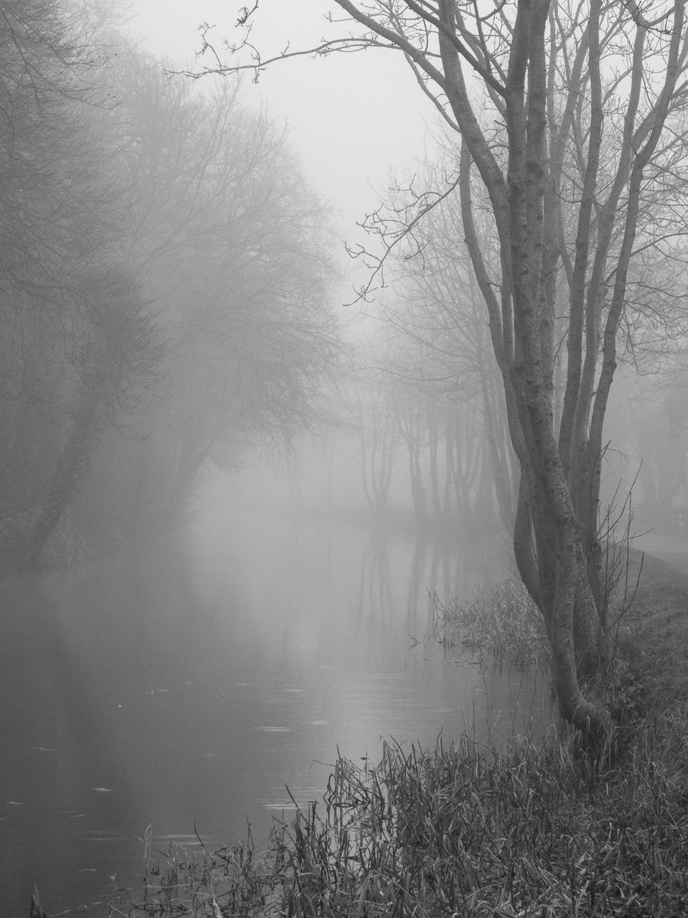 Grand Canal Spur 8 Feb_Mist_108.jpg
