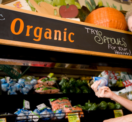 Image courtesy of http://cdn.sheknows.com/articles/woman-shopping-for-organic-food.jpg