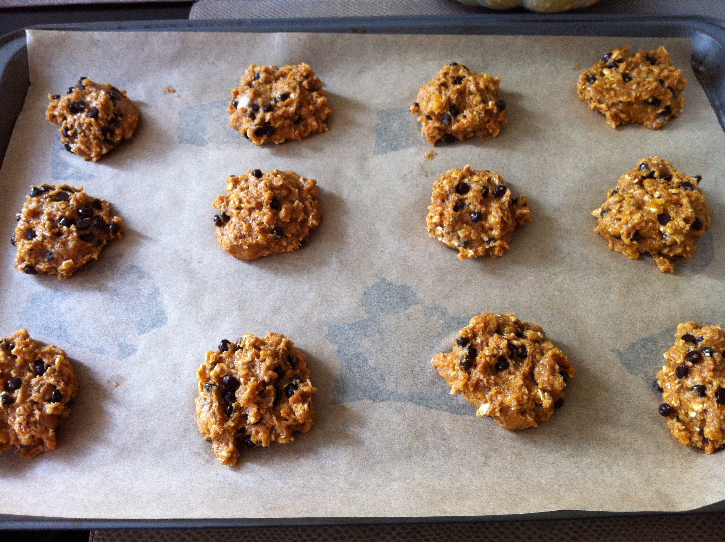 These vegan pumpkin oat chocolate chip cookies were so amazing and delicious.