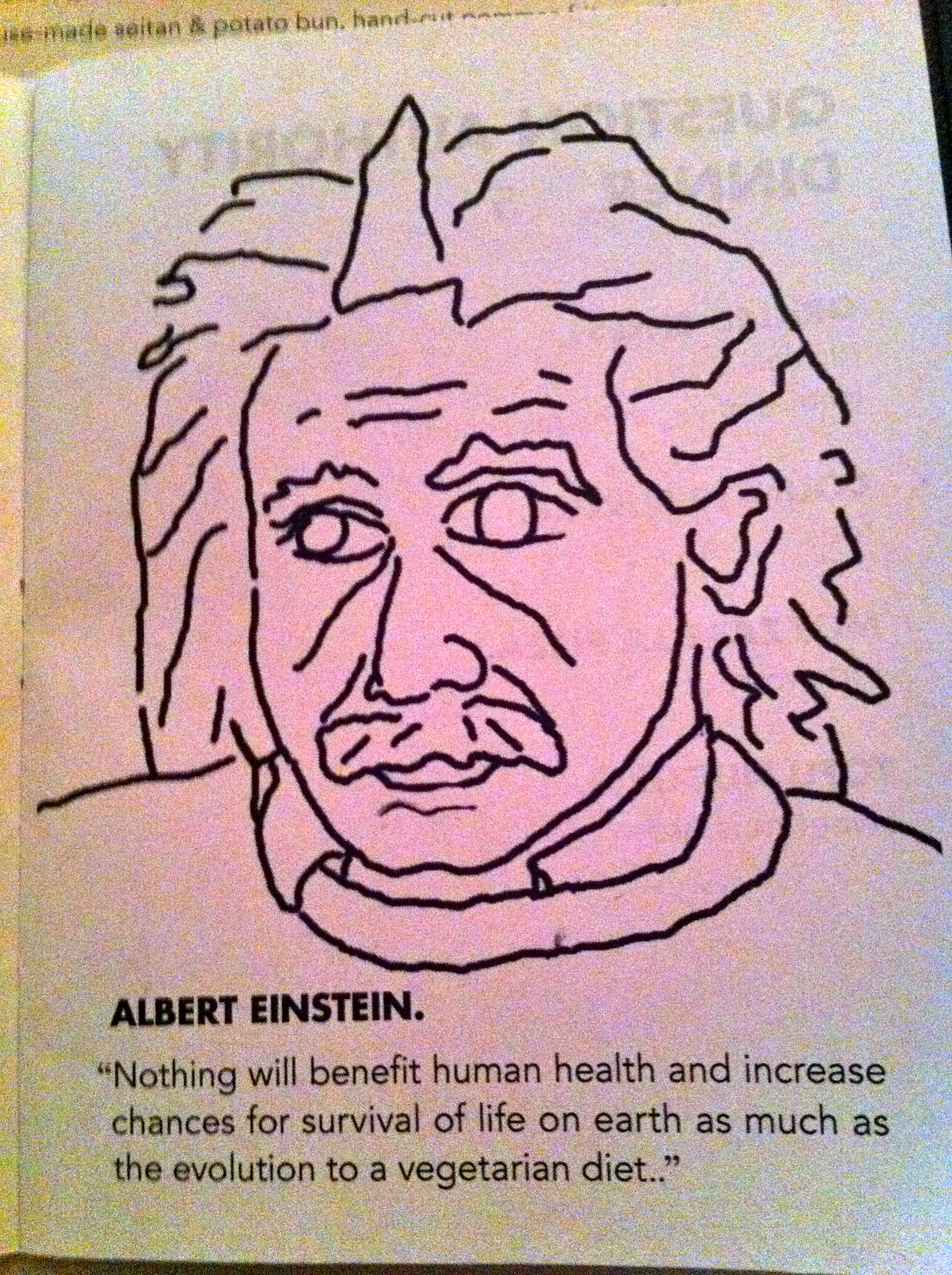 Einstein was a vegetarian, or a vegan!