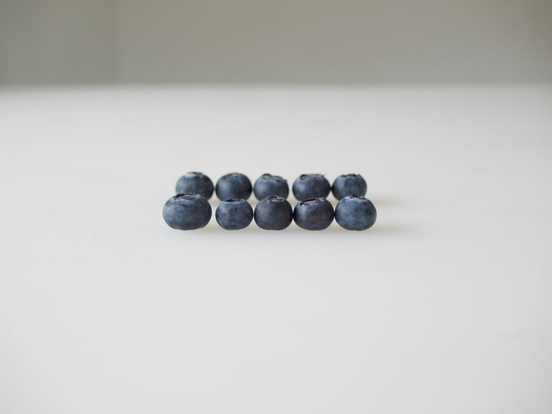 Jonathan Blaustein Organic Blueberries