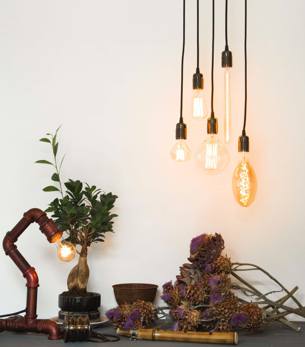 A sample of the fabulous range of lighting including lamps and bulbs from William & Watson.