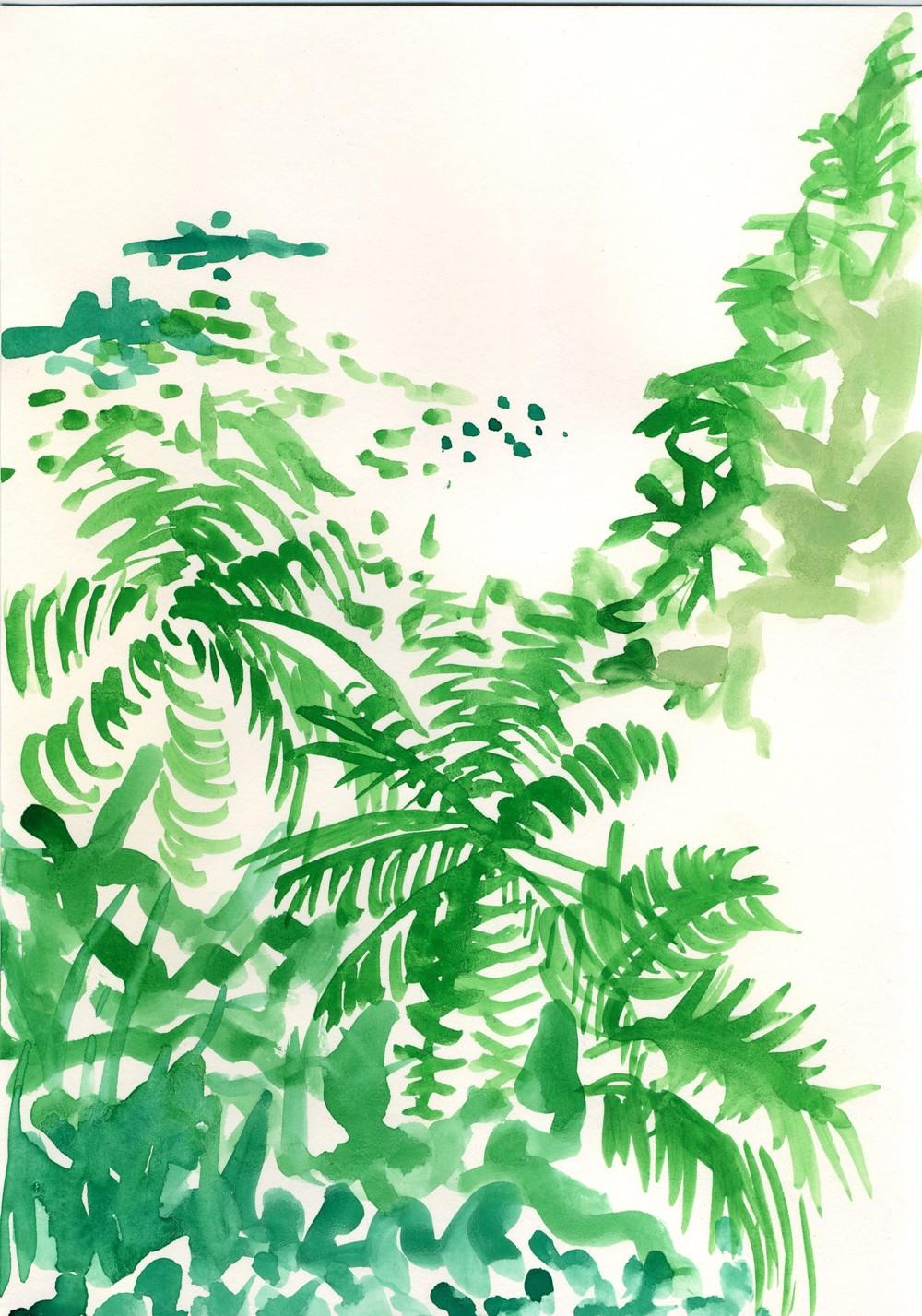 Jungle, Jungle