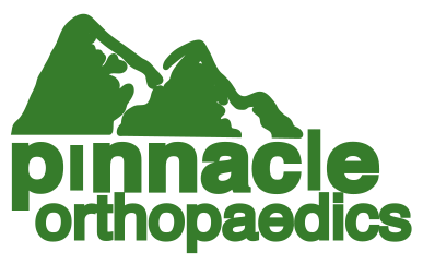 pinnacle logo pms 364 vector  2010.png