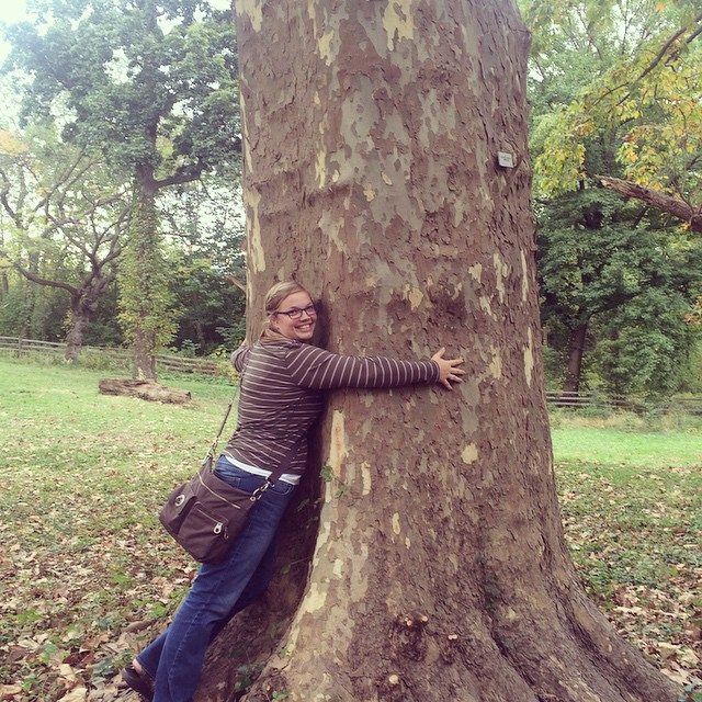 I like big trees and I cannot lie!