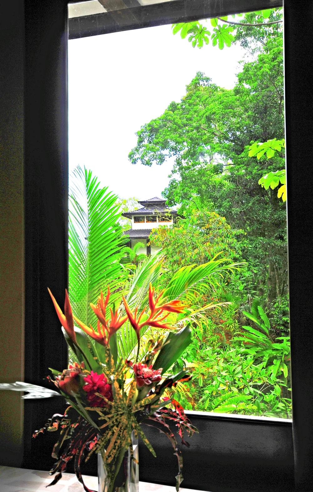 Leighanne pics pagoda caribaea 003.jpg