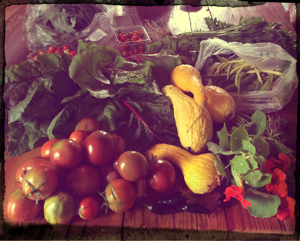 One of Better Farm's $20 bags of freshly picked, organic produce.