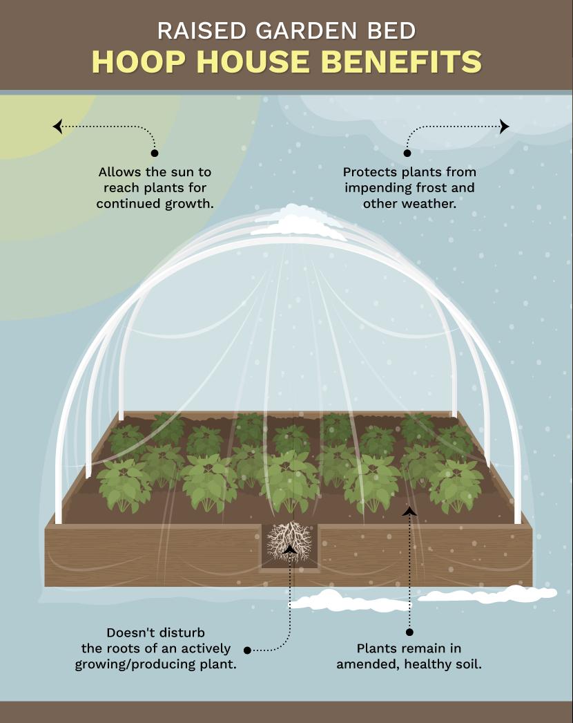 garden bed hoop house - Garden Row Covers
