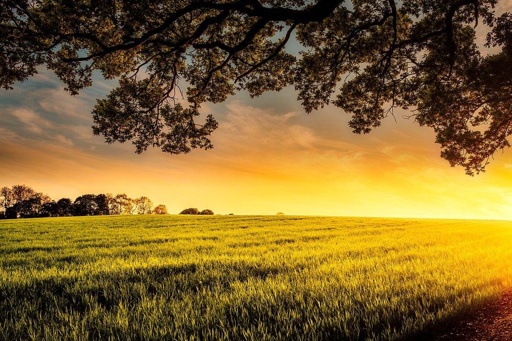 sunset-2420745_1280.jpg