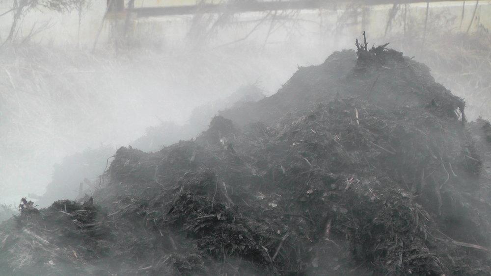 Compost_steaming_-_detail_3.jpg