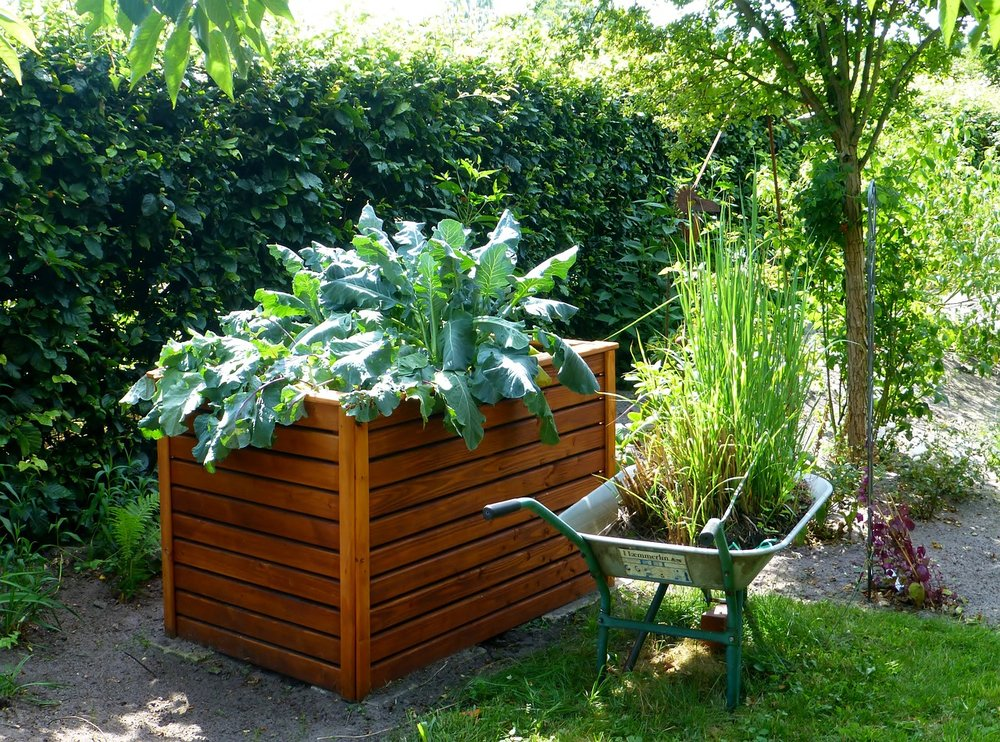 garden-883095_1280.jpg