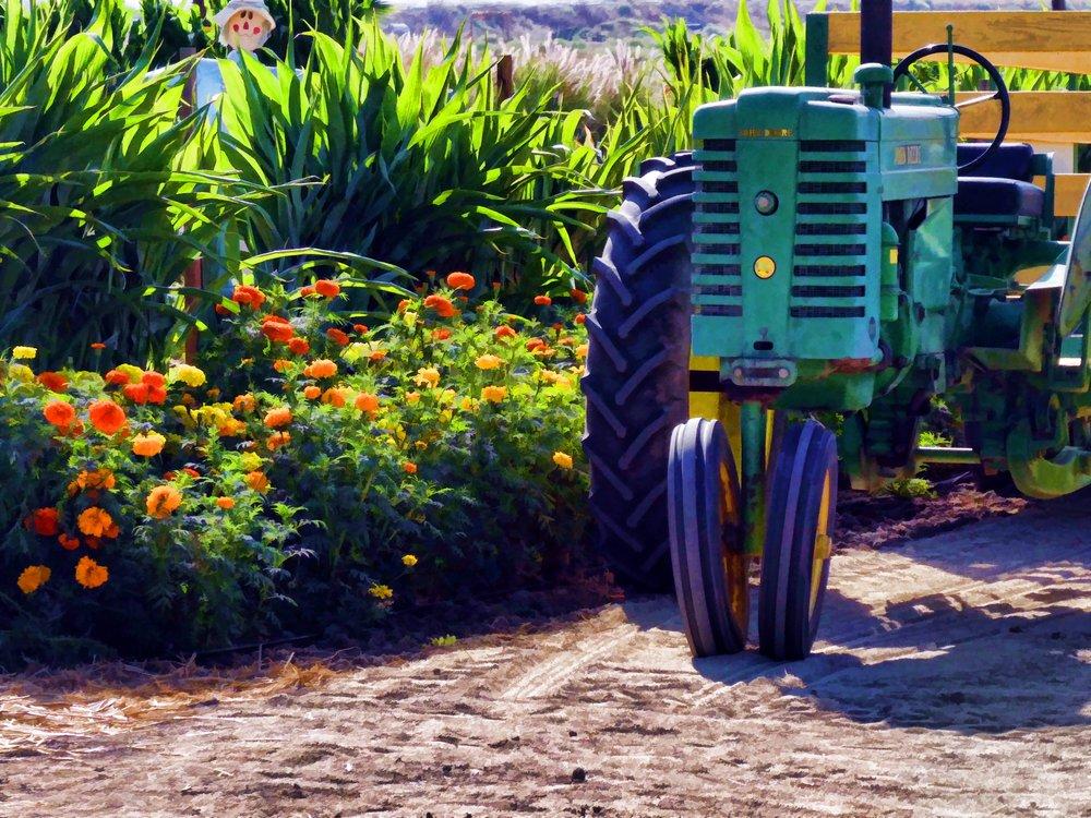 Blog — Better Farm