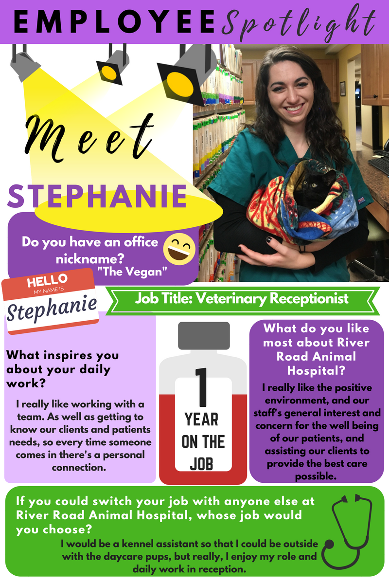 Stephanie Employee Spotlight.png