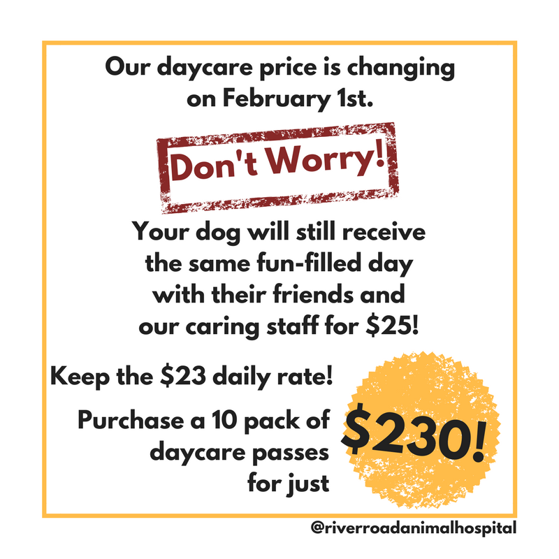 Our daycare price is changing on February 1st..png