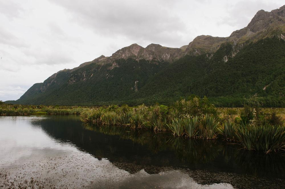 New_Zealand_Katie_Noble001.jpg