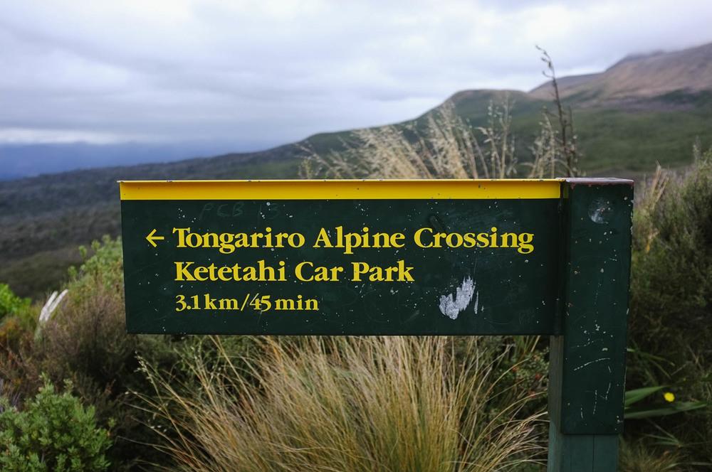 New_Zealand_Katie_Noble045.jpg
