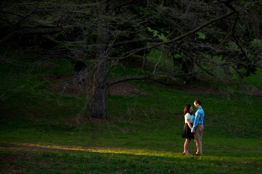 Brookline_Arnold_Arboretum_Engagement003.jpg