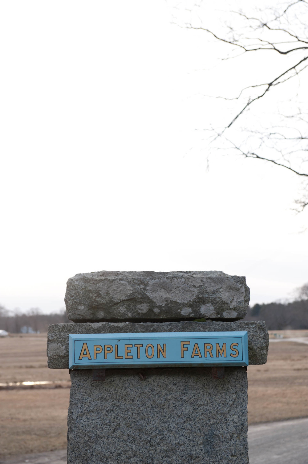 Edible_Boston_Appleton_Farm018.jpg