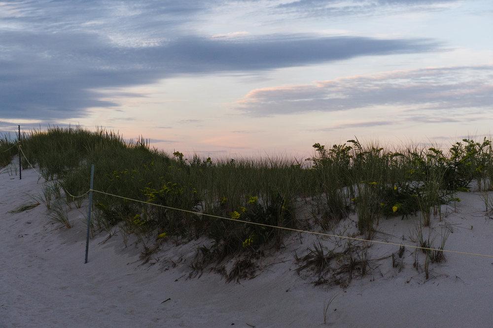 Beach-Family-Photos017.jpg