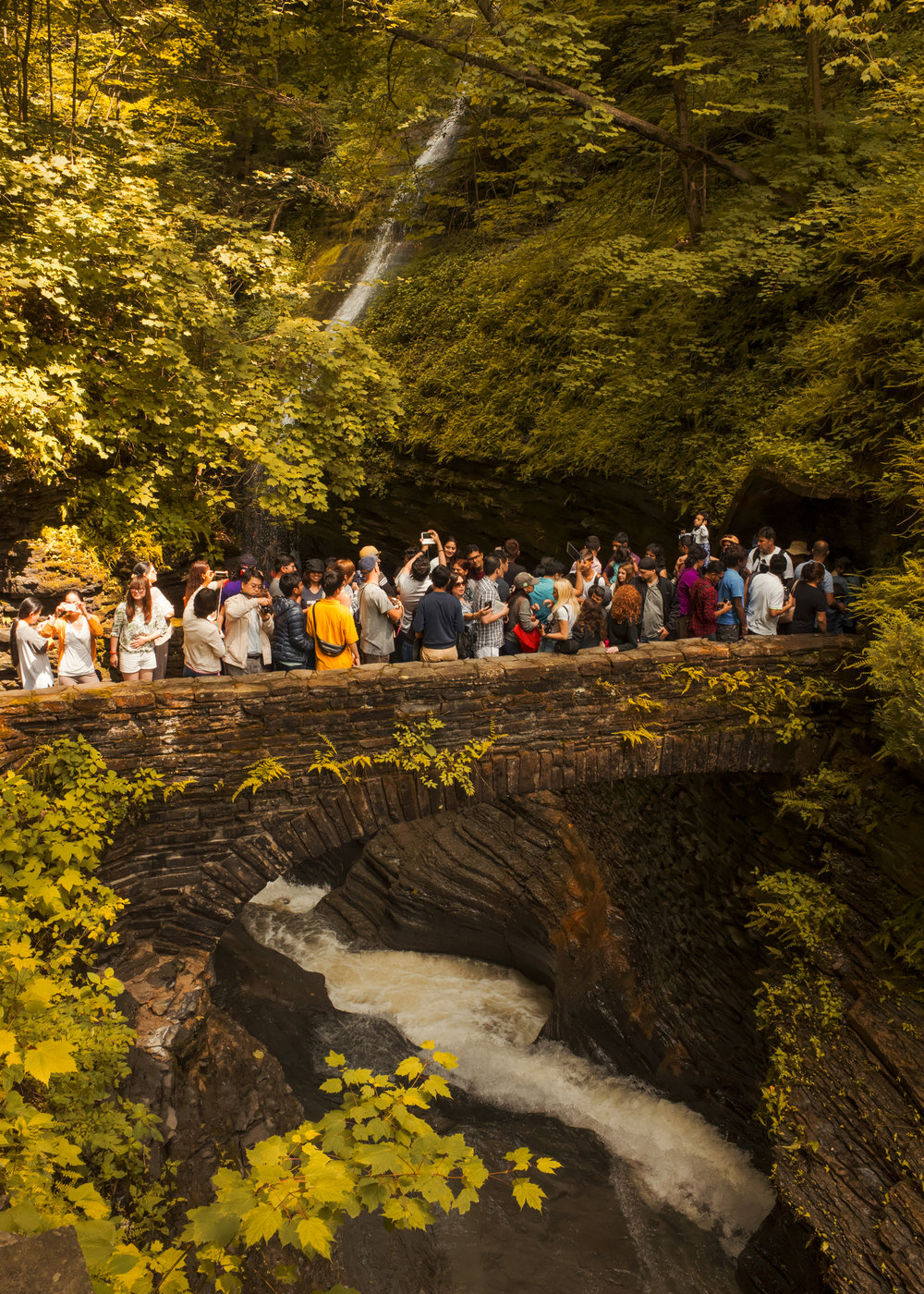 WaterfallBridgeCrowd copy_10Inches.jpg
