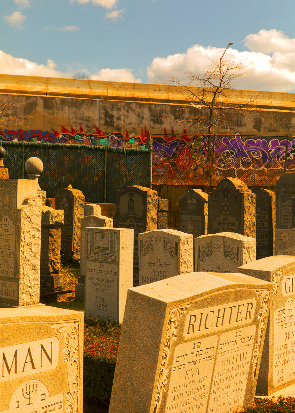 GraveyardGraff_10in.jpg
