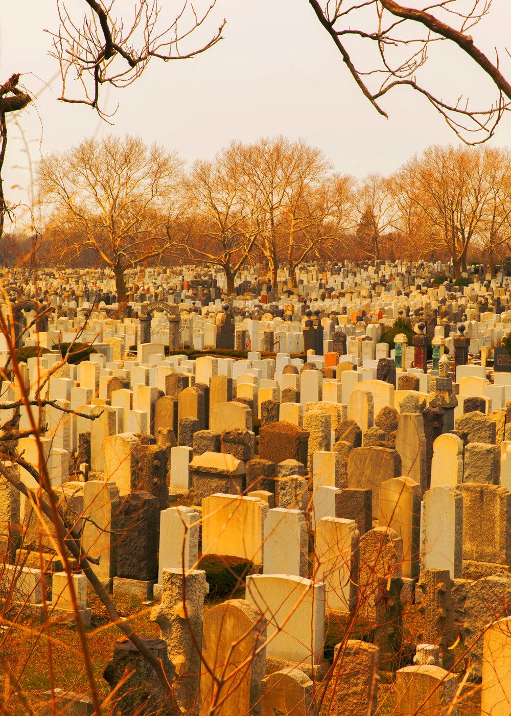 GraveyardBusy_10in.jpg