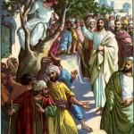 zacchaeus-bible-story-21262976-150x150.jpg