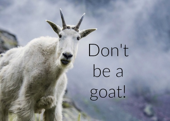 Don't be a goat.jpg