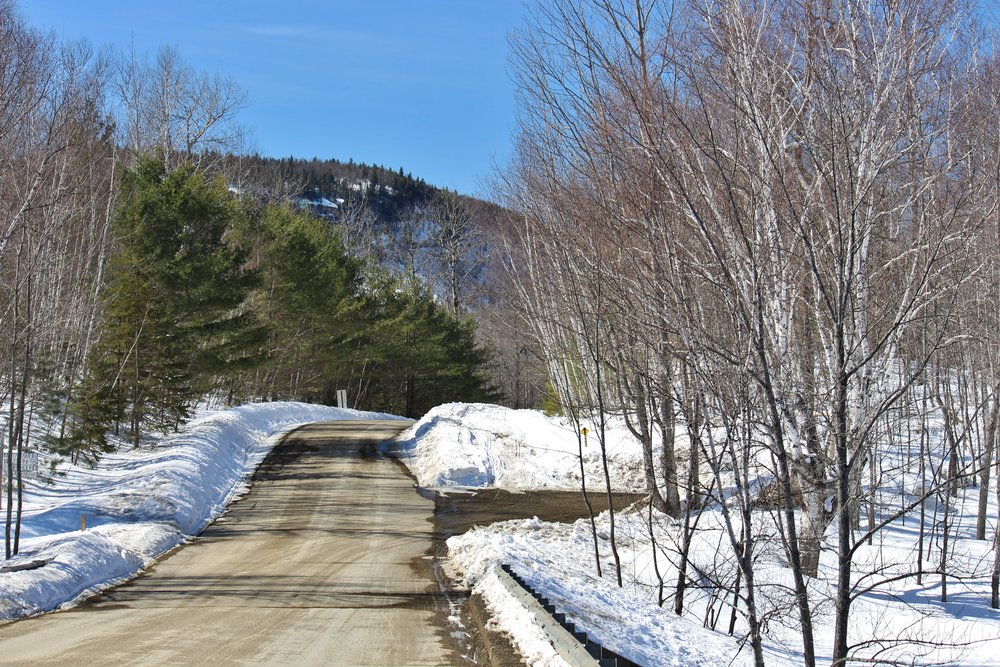 Road to northern entrance of Katahdin Woods and Waters
