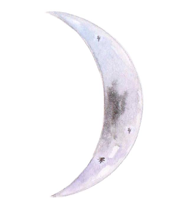 Moon_waxing.png