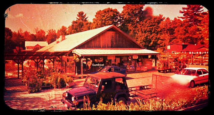 Sunfrost Farmers' Market