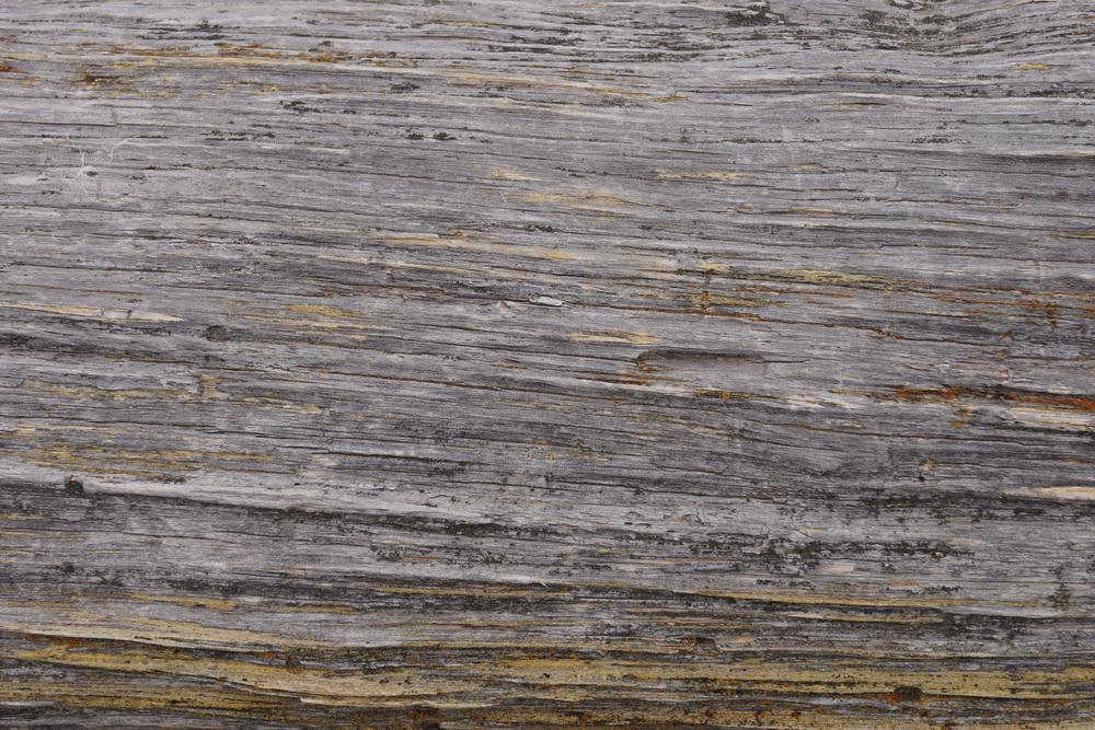 Wood-Grain-2.jpg