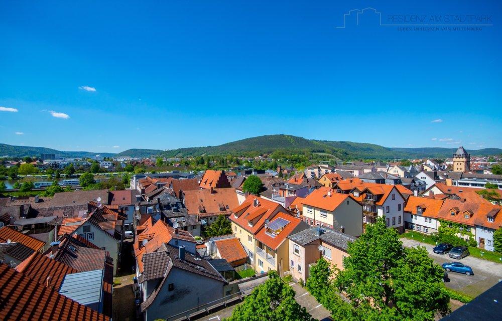 Blick über die Dächer von Miltenberg.jpg