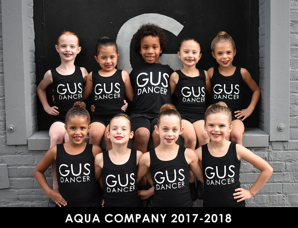 Aqua Company 2017-2018.jpg