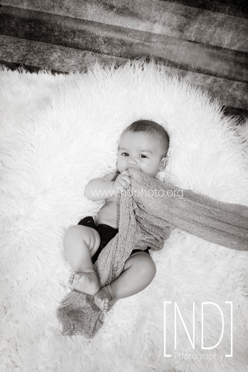 Baby-Photography-Waverly-Iowa.png