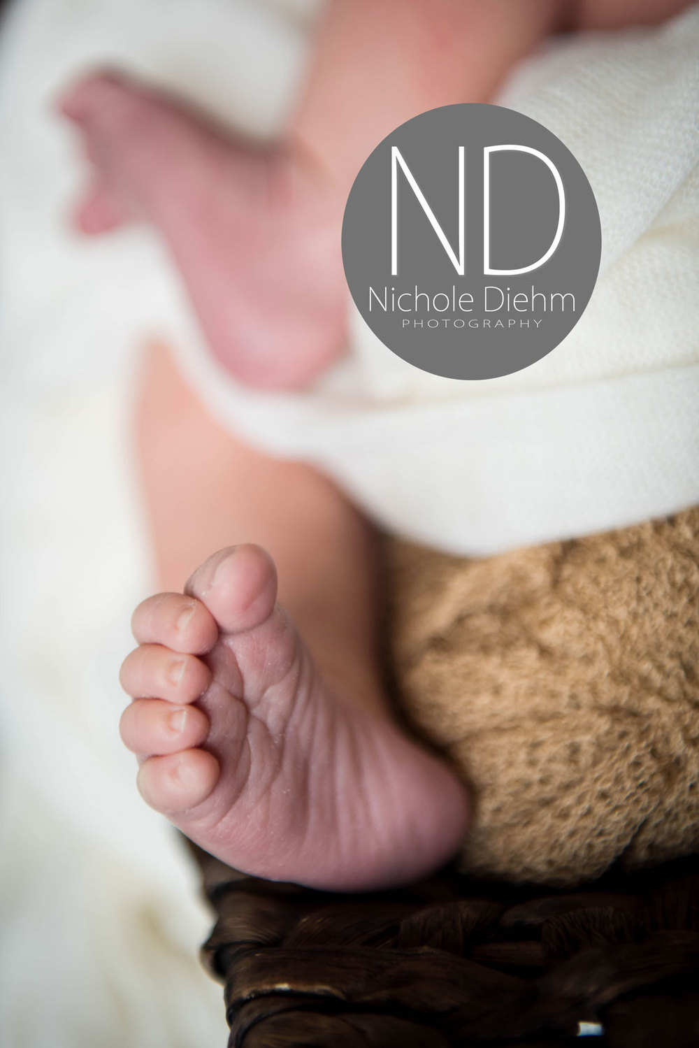 Newborn-Photography-gold-brown-cream-wood--foot--Cedar-Falls-Iowa.jpg