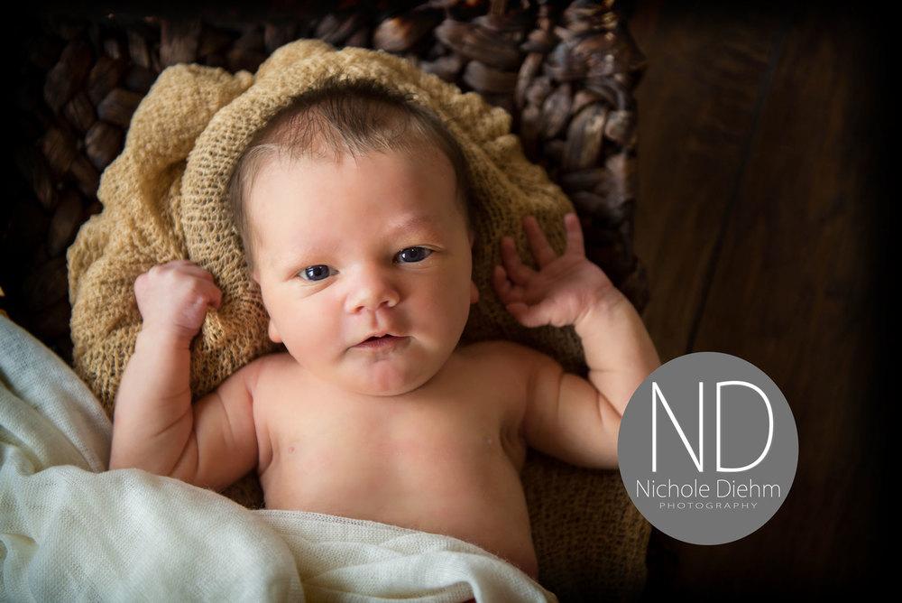 New-Born-Photography-wood-wicker-gold-cream-brown-Cedar-Falls-Iowa.jpg